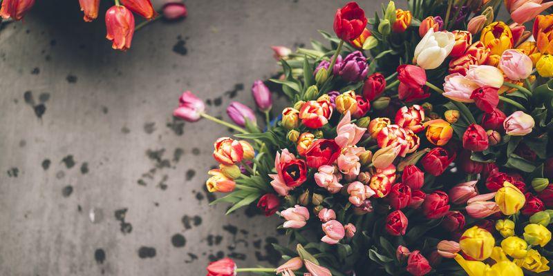 Цветы в столице самые красивые